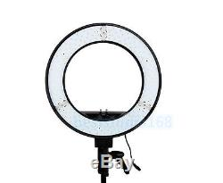 Photo Studio 12 240PCS 5500K Dimmable LED Adjustable Ring Light +2M Light Stand